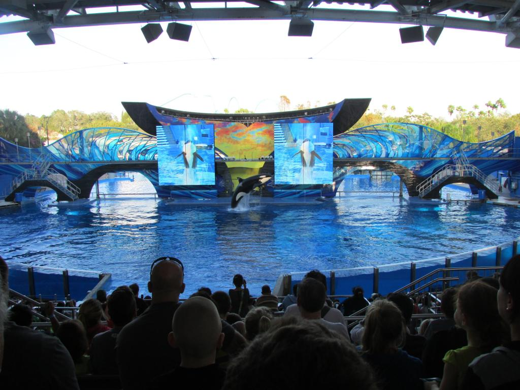 SeaWorld Entertainment Inc (SEAS) Receives $17.04 Consensus Target Price from Analysts