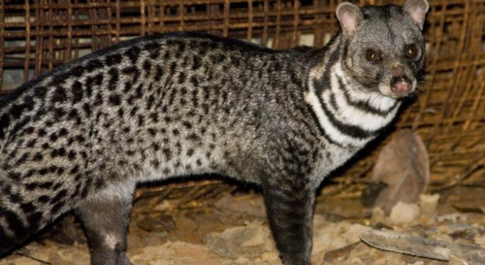 How Will the CIVETS ETFs Perform the Rest of 2012?