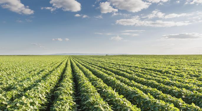 Agribusiness ETFs Fight Summer Malaise