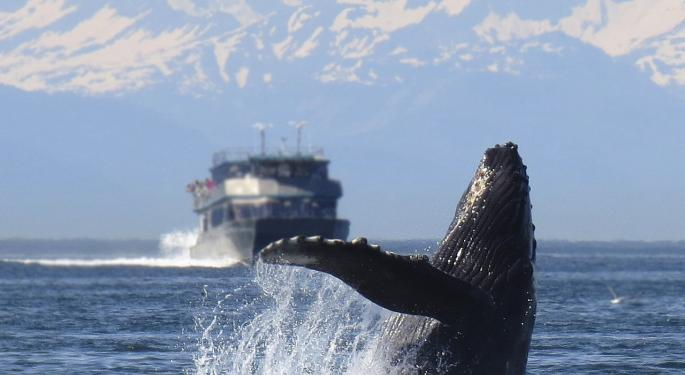 DryShips' Incredible Whale Of A Tale Of The Tape Day
