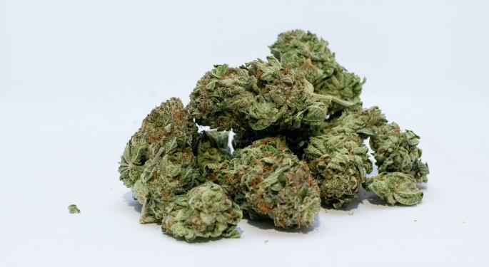 7 Best Marijuana Stocks That Blazed A Trail In 2017