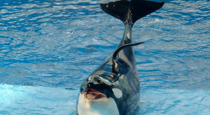 SeaWorld's Orca Exit Worth $2 To $8 In Upside, FBR Predicts