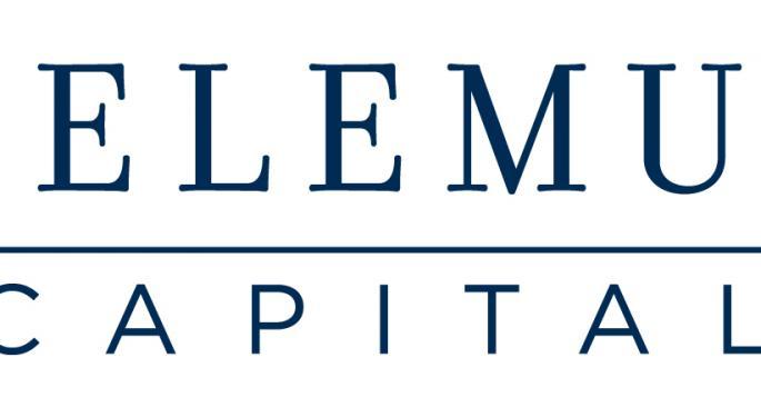 Telemus Capital 2013 Global Outlook